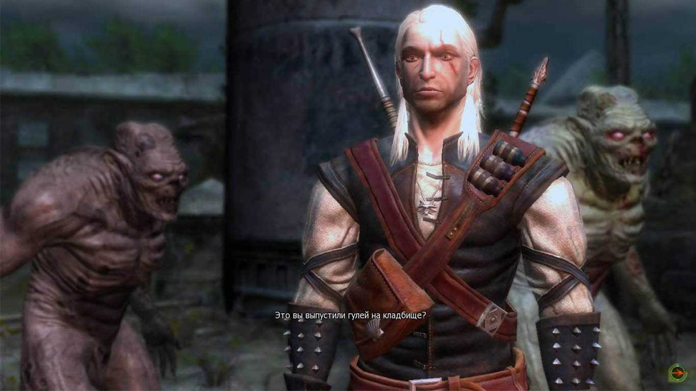 The Witcher. Gold Edition Скриншот из игры