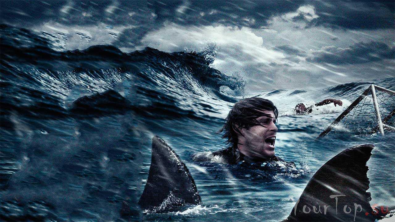 Над глубиной: Хроника выживания