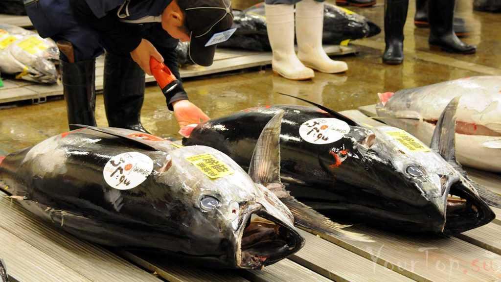 """Рыбный рынок """"Цукидзи"""" (фото 2)"""