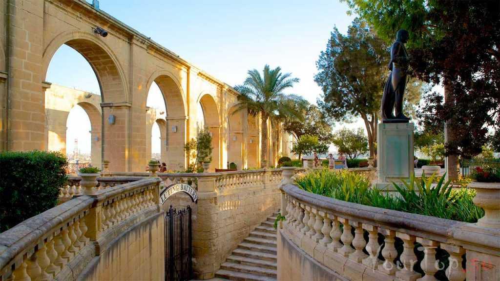 Зелёные сады Баракка (фото 3)